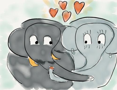 Visitiamo le 4 stanze del cuore: amore, compassione, gioia ed equanimità